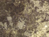 abalone-travertine